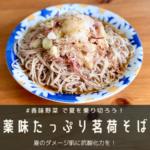 ◆【バリバリ食べたい香味野菜!】薬味たっぷり茗荷そば♪